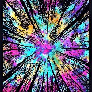Tenture FORET tie&dye arc en ciel 2.40x2.20m-0